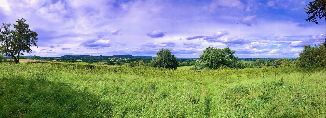 Cholmondeley vista