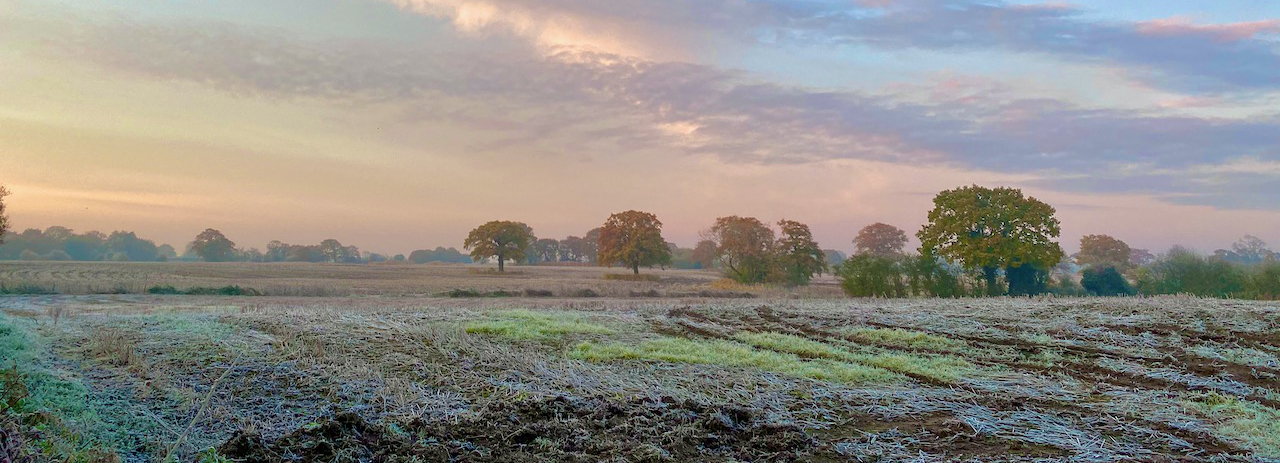 Frosty field in Chorley