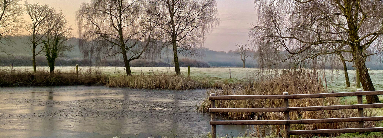 Frosty pond in Cholmondeley