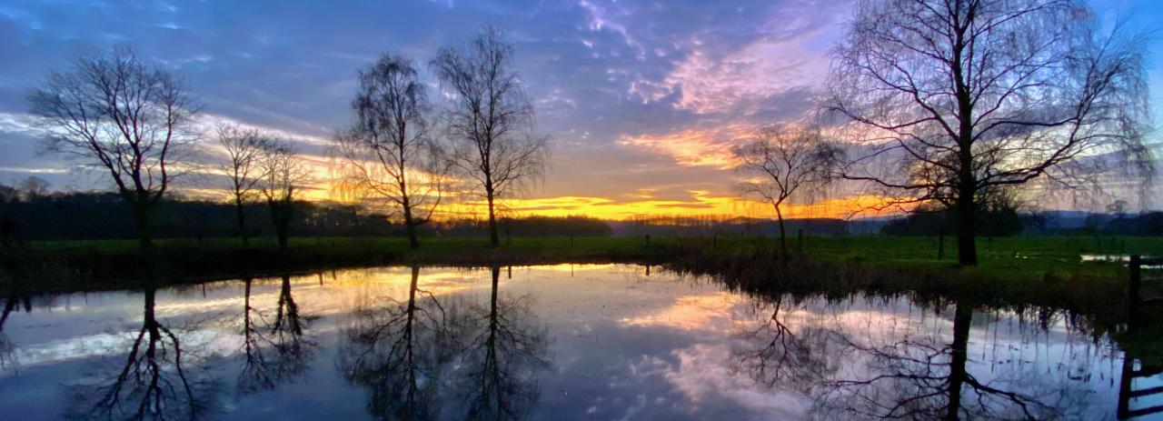 Winter sunset over pond in Cholmondeley