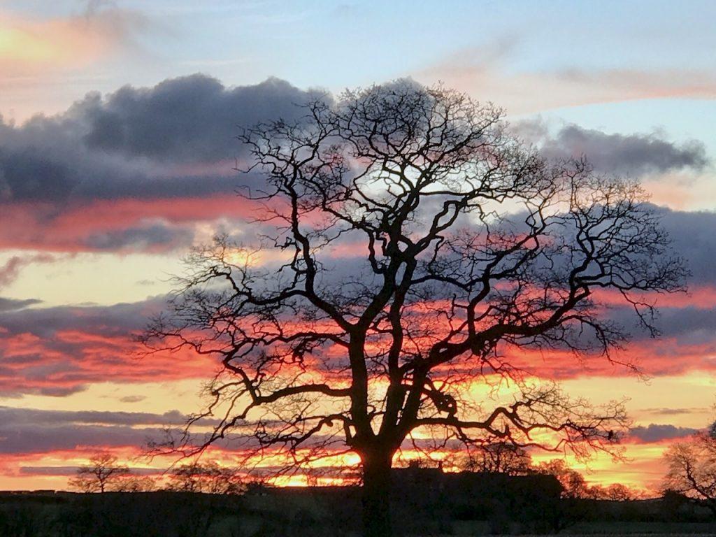 Winter Sunset in Chorley