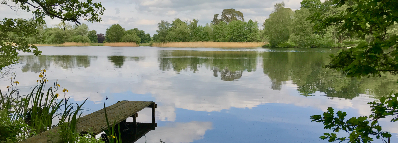Deer Park Mere in Cholmondeley