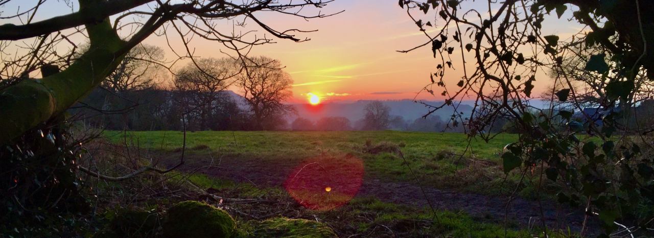A Wintry Sunset in Cholmondeley